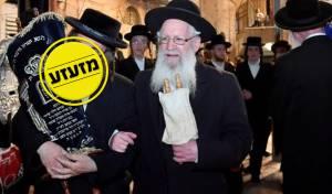 הגאון הרב אברהם דב ליטמנוביץ