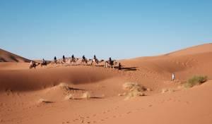 כיסוי הכביש בחול מוכיח שהיה שמנוני. אילוסטרציה - נהגת שהואשמה בתאונת דרכים – זוכתה מחמת הספק