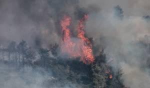 השריפה בהרי ירושלים: ישראל ביקשה סיוע מ-5 מדינות