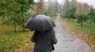 כך תבחרו מטריה שתשמור עליכם יבשים