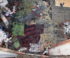 חלק מהתוכים שנשרפו - גבר שרף למוות עשרות תוכים בראשון לציון