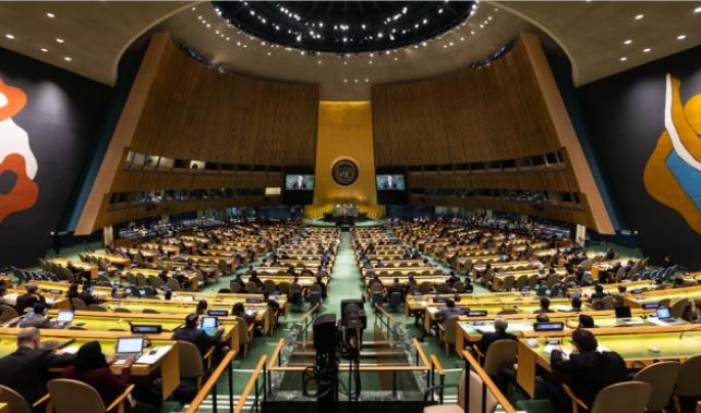 """עצרת האו""""ם תתכנס לדיון על הלחימה בעזה"""