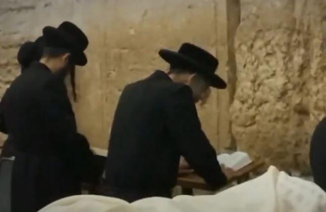 הסליחות של רבי אלימלך בידרמן בכותל. צפו