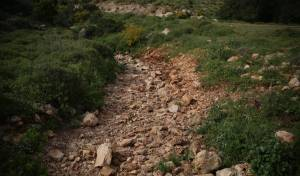 טיול דרך עדשת המצלמה לנחל חילזון
