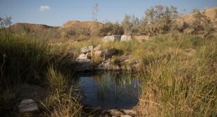 טיול דרך עדשת המצלמה לעין סהרונים בדרום