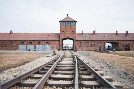 """לבקשת רבנים: עתירה נגד """"חוק השואה"""""""