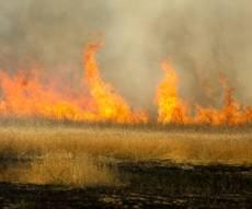 אש בדרום