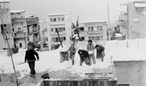 פינוי שלג בחיפה