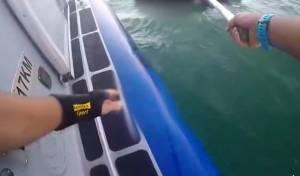 השיטור הימי חילץ משפחה שנסחפה על מזרון • צפו בתיעוד