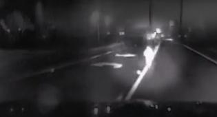 מפחיד: פעוט רץ באמצע הלילה בכביש המהיר