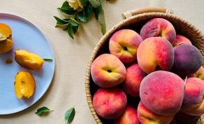 """איך חוצים אפרסק או שזיף? ממש לא על ה""""פס"""""""
