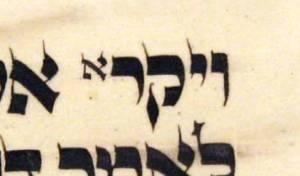 """""""יחי ההבדל הקטן"""" // הרב מנחם ישראלי"""