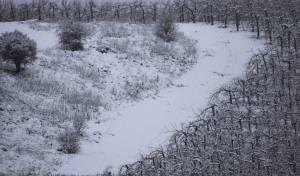 תחזית מזג האוויר: הלילה הכי קר של השנה