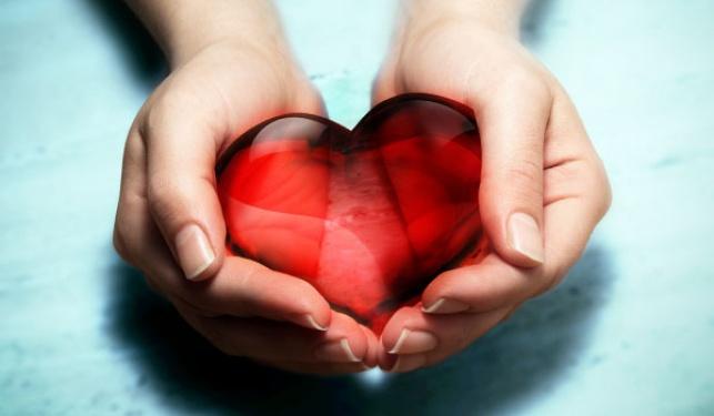 פרשת תרומה: גוונים בתרומת הלב