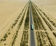 """""""הקיר הירוק"""": 20 מיליון עצים נגד סופות חול • צפו"""