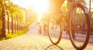 """ב""""ב: גנב אופניים בשווי 20 אלף ש""""ח ונעצר"""