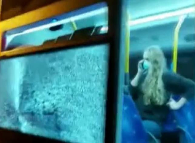 וונדליזם: צעירים חרדים מנפצים אוטובוסים