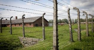 מחנה הריכוז אושוויץ-בירקנאו - הטלאים הצהובים נרכשו במכירה פומבית