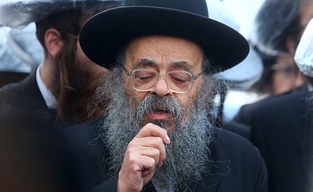 הרב דוד שמידל