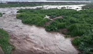 זרימות עזות בנחלי בקעת הירדן: צפו בתיעוד