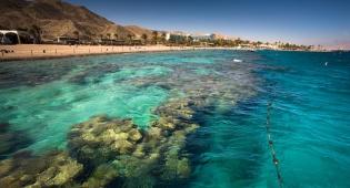 השמורה הימית מהיפות בעולם - שמורת האלמוגים - הטיול המופלא עבור בני נוער