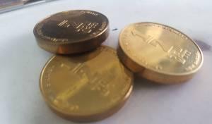 המטבעות שנתפסו - ערד: נחשפה מעבדה ליצור מטבעות מזויפים