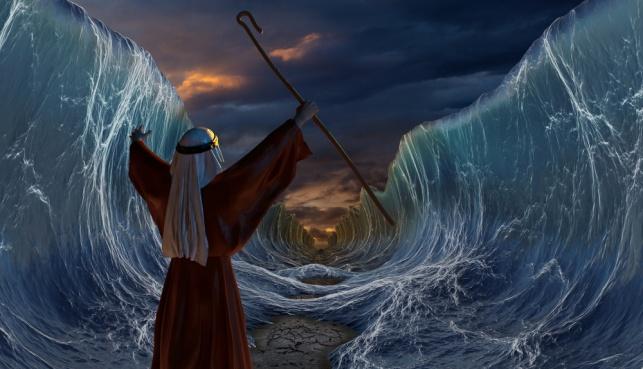 ההוראה מקריעת ים סוף: אל תצעק - יש  פתרון!