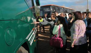 אוטובוסים במירון. ארכיון