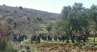 חוצים את הגבול - מפגינים חצו את הגבול בין לבנון לישראל