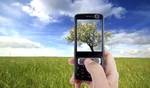 מה עושים עם כל התמונות בטלפון? אילוסטרציה
