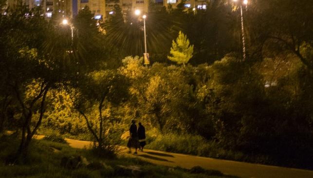 גן סאקר בירושלים. אילוסטרציה