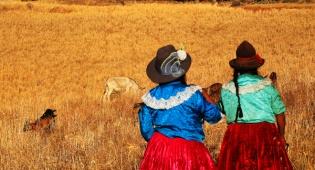 המאושרים בעולם - בדרום אמריקה