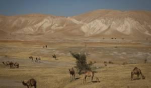 שטח החלת הריבונות בירדן