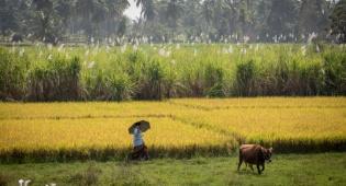 טיול דרך עדשת המצלמה להודו המסתורית