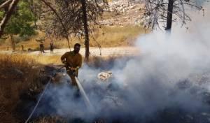 להבות בירושלים: בית מדרש וגן ילדים - פונו