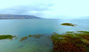 האי בכינרת, צילום מהיום