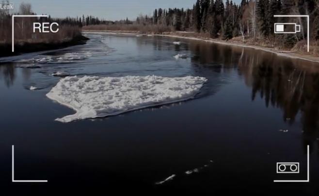 המפלצת מלוך נס אותרה באגם באלסקה? צפו