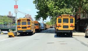 אוטובוסים להסעת תלמידים חרדים בברוקלין