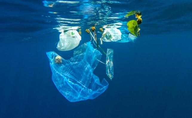 בשורה: פחות שקיות פלסטיק הושלכו בחופים