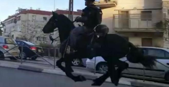 """תיעוד: הפרשים מבריחים את מפגיני """"הפלג"""""""