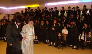 שמחת בית שומרי אמונים-האלמין-זידיטשויב