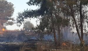 """""""ילדים הציתו""""; שוב: שריפה ליד  העיר אלעד"""