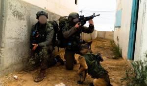 כלבים ולוחמים בתרגיל מיוחד ביחידת 'עוקץ'