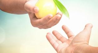 איך נזכה לראות פירות מבורכים?