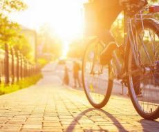 רוכבי אופניים חשמליים חייבים בתיאוריה