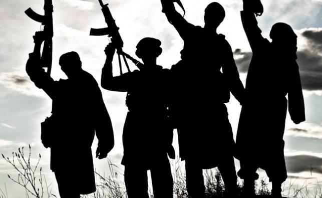האיראנים באים: מאות לוחמים הגיעו לסוריה