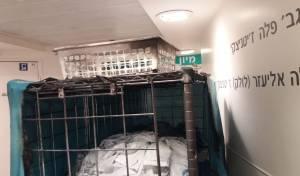 לוחמי האש הוזעקו לחדר המיון ב'איכילוב'