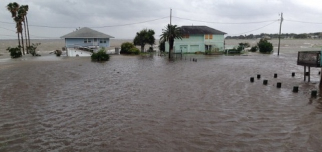הסופה ביוסטון
