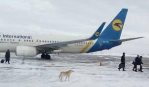 נוסעים חסידיים באוקראינה