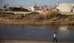 ים חורפי בחופי אשדוד ושפך לכיש • גלריה